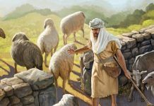 Seguir ao chamado de Jesus
