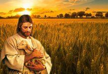 A misericórdia, o maior Amor de Deus