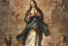 Nossa Senhora Imaculada Conceição, sem pecado!