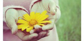 Catequese e espiritualidade Como desenvolver a compaixão
