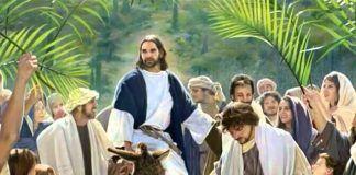 Catequese e formação - Ramos nas mãos
