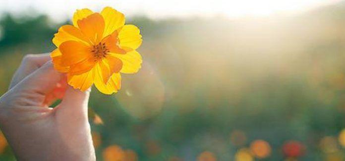 O silêncio é o porteiro da vida interior