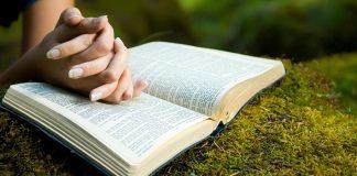 Você sabe qual é o valor da Palavra de Deus para a Igreja?