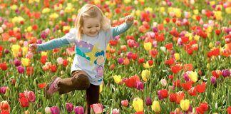 Nesta primavera, abra-se ao amor e seu jardim florirá