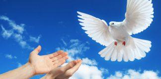Exigências da paz