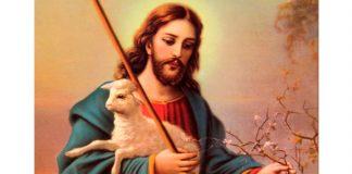"""Solicitude pelas """"ovelhas sem pastor!"""""""