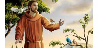 São Francisco de Assis - Irmão universal
