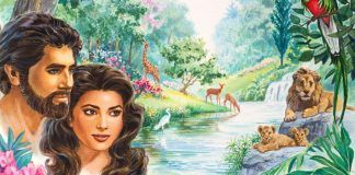 Como Adão e Eva tiveram descendentes?
