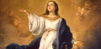 nossa senhora Imaculada Conceição