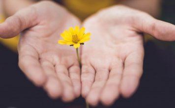 cura e libertação para felicidade