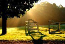 voz do silêncio e o caminho da paz