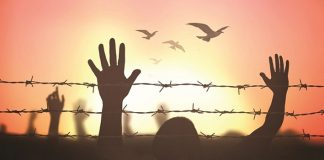 Direito humano Direito à vida