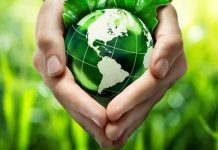cuidar da natureza nossa casa comum